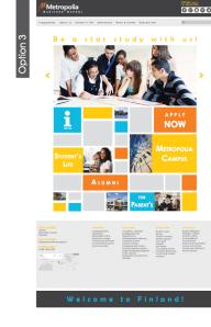 Website option3